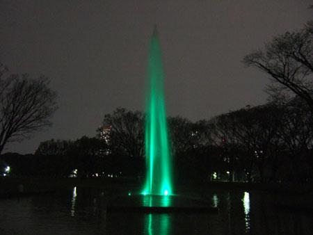 代々木公園ライトアップ4