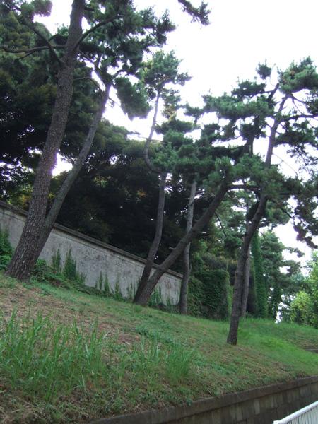 富士見坂(NO.148)2