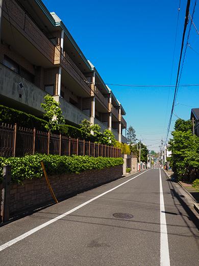 化坂 (NO.275)1