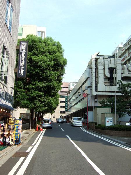 雁木坂(NO.212)3