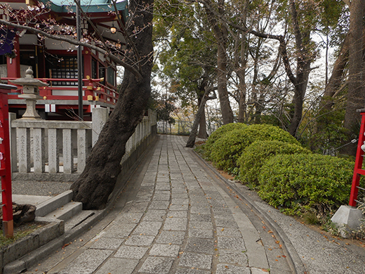 多摩川浅間神社の女坂かも?3