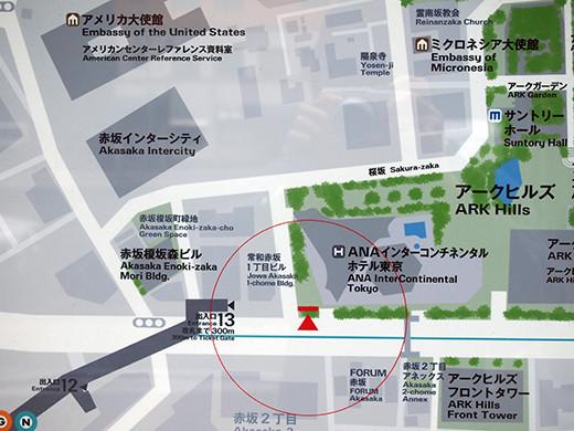 桜坂の桜見物6