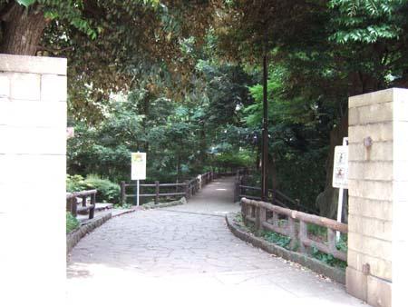 木下坂 (NO.100) 6