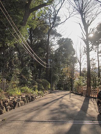 代々木八幡宮の女坂(NO.261)1