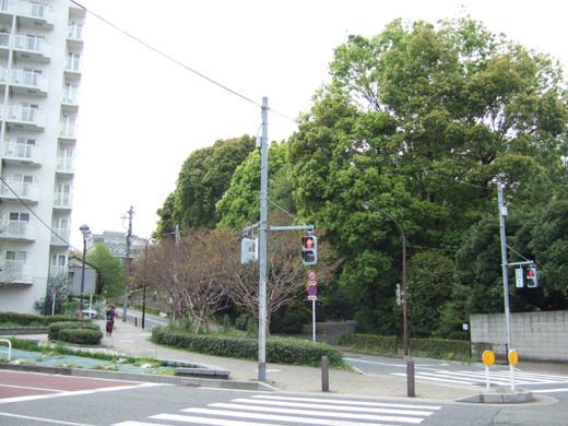 渋谷國學院と御用邸の横の坂7