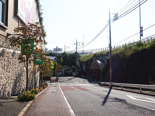 高島屋ガーデンアイランド横の坂道3