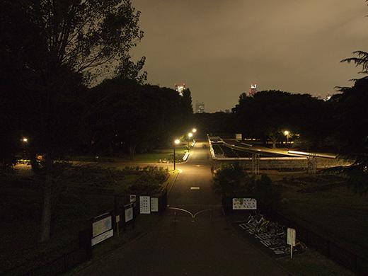 代々木公園夜景定期観測1