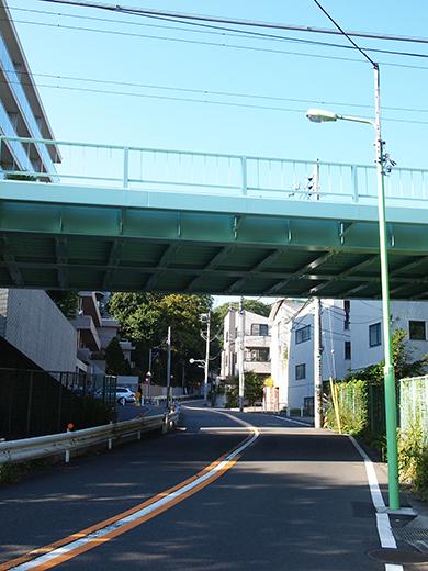 まむし坂(NO.252)4