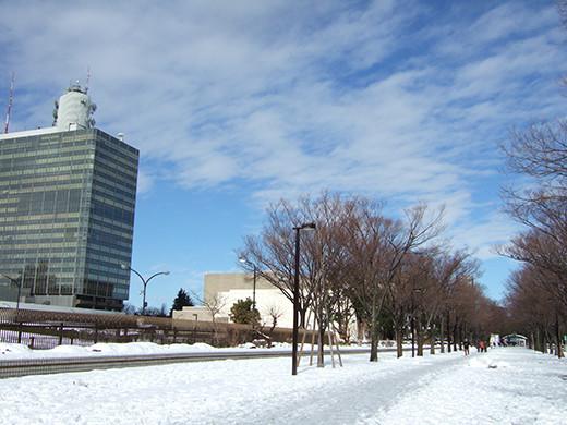 渋谷雪景2014_06