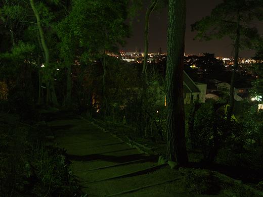 芦屋東山公園のライトアップ4