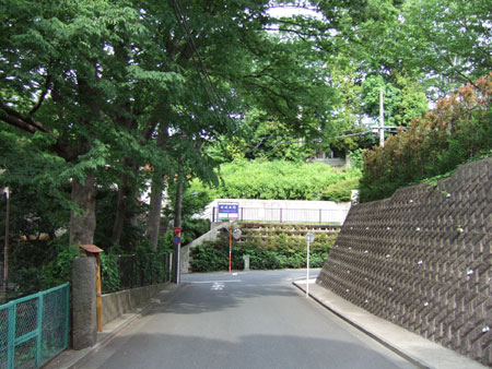 紅葉坂(NO.226)2