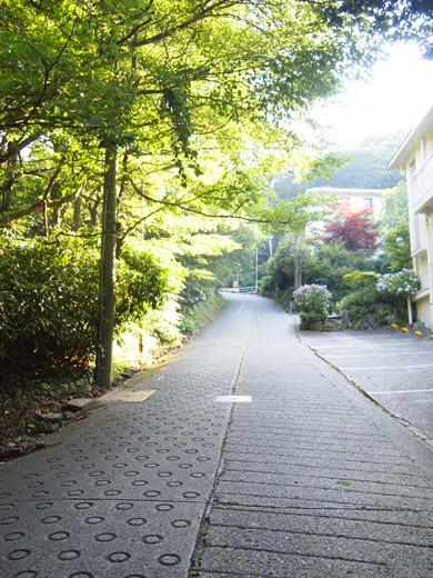坂道を箱根登山ケーブルカーとともに1