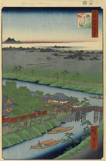 ハナミ坂(NO.271)10