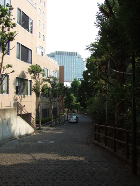 錦華坂(NO.217)6