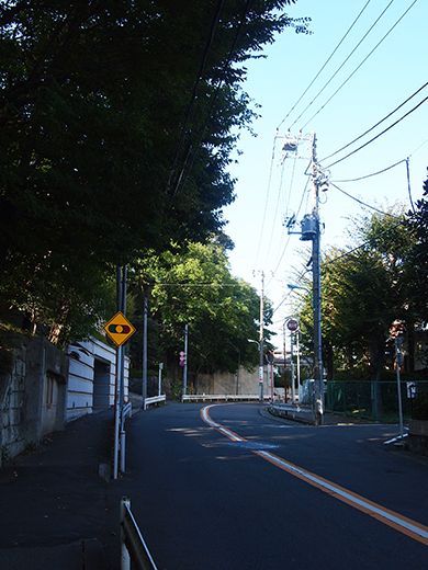 まむし坂(NO.252)6
