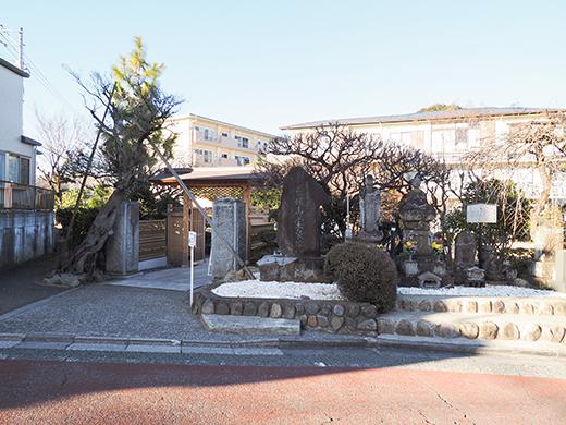 山の婆坂(NO.291)9