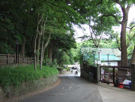 忍坂(NO.194)6