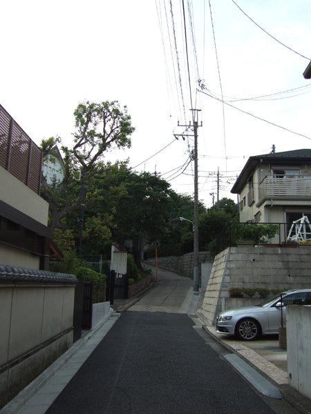 めぐみ坂(NO.230)12