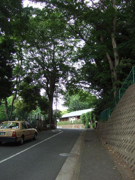 車坂(NO.227)3