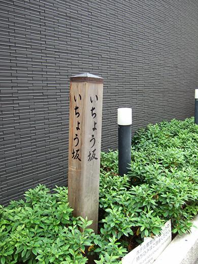 いちょう坂(NO.244)7