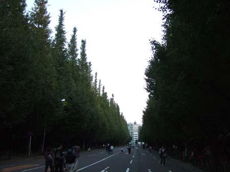 イベント散歩2_6
