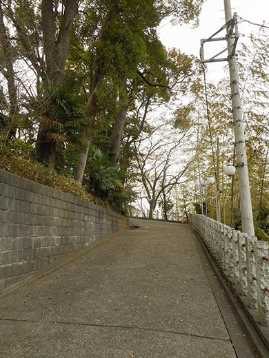 多摩川浅間神社の女坂かも?8