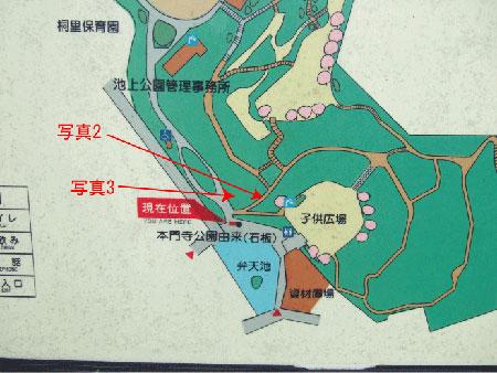 本門寺公園内の階段1