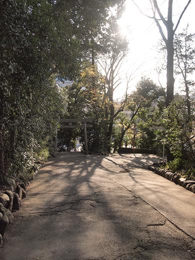 代々木八幡宮の女坂(NO.261)3