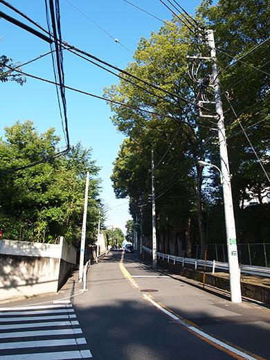 まむし坂(NO.252)9