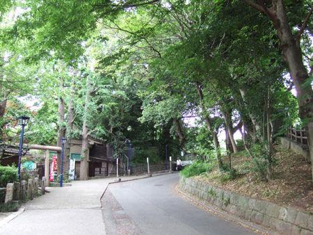 忍坂(NO.194)5