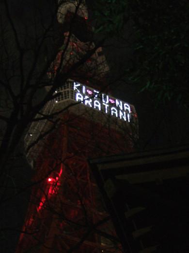 東京タワーの光のメッセージ4