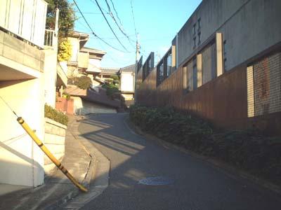 fujisaka14_sakasita