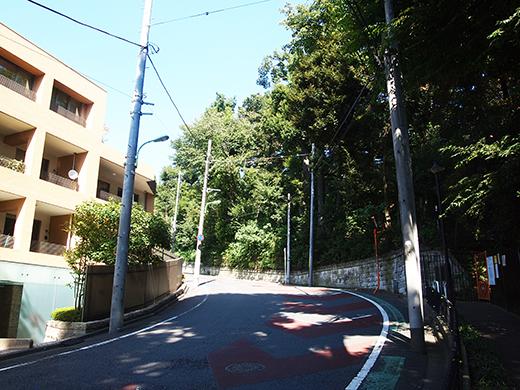 馬坂 (NO.253)2