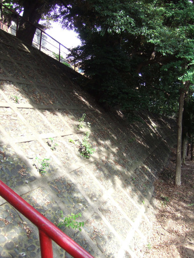 子安八幡神社の急階段4
