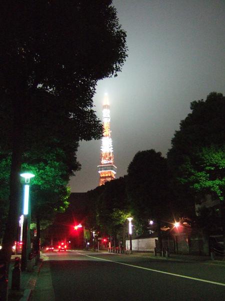 とある街の風景(ライトアップ)1