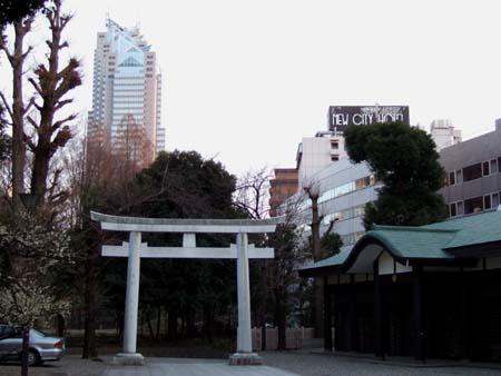 新宿中央公園のお寺2