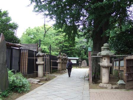 上野東照宮の男坂?4