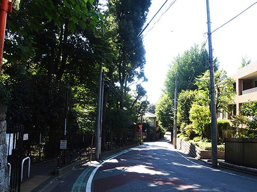 馬坂 (NO.253)3