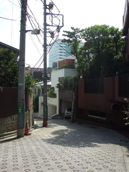 ネギ山坂(NO.176)3