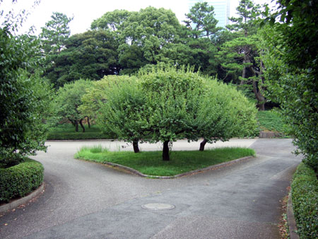梅林坂(NO.206)2