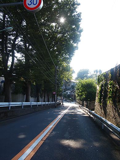 まむし坂(NO.252)11