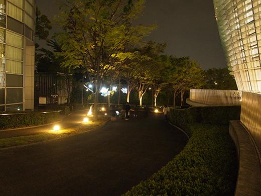 夜中の国立新美術館とさくら坂をぶらりと1