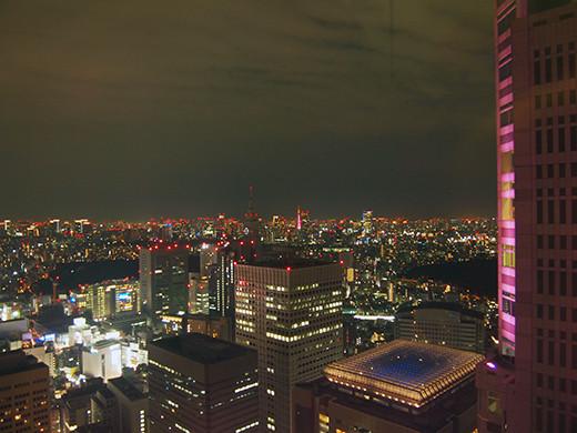 ひさしぶりの新宿都庁からの東京タワー1