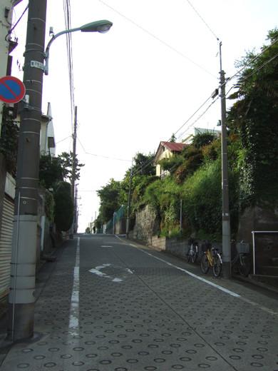花抜坂(NO.235)2