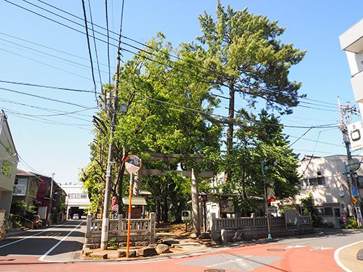 氷川坂(NO.277)6