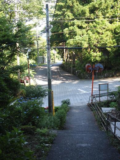 上強羅駅への坂道2