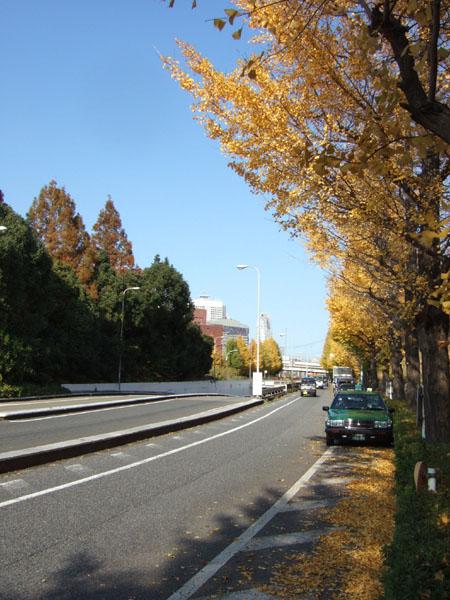首都高新宿線の出入口あたりの坂3