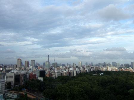 新宿樹々景1