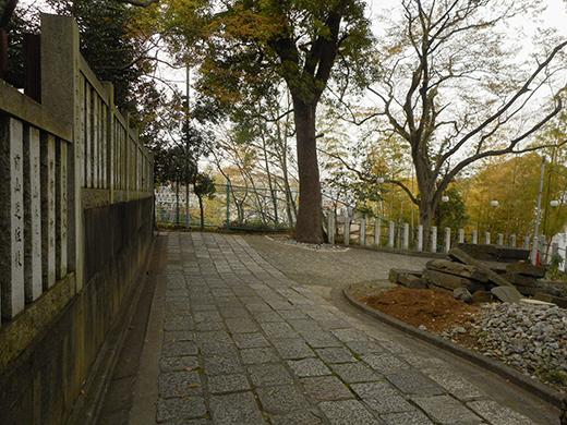 多摩川浅間神社の女坂かも?4