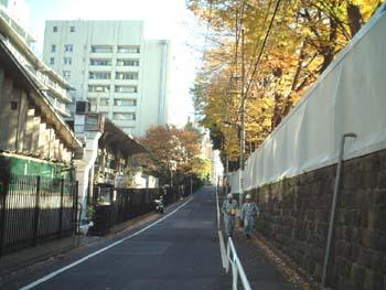 fujisaka11_sakatyu